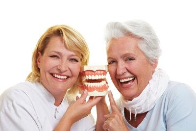happy senior woman and dentist holding a teeth model